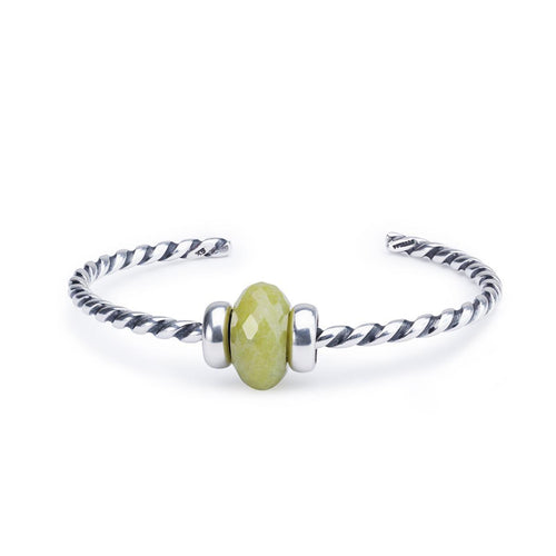 Great Lakes Boutique Serpentine Twisted Silver Bangle