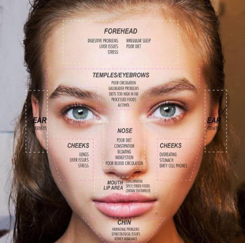 Acne Face Mapping SMARTMED Ollie Belle - Acne face map organs