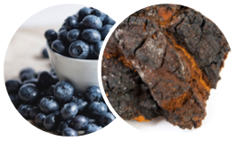A list of ingredients including Canadian blurberries and Chaga mushrooms.