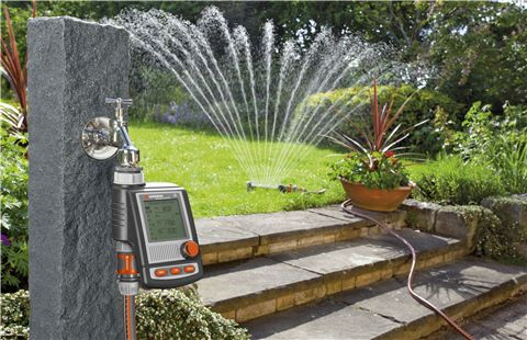 10 Golden Rules for Watering