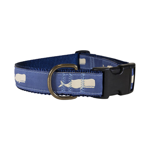 "Moby (blue) 1.25"" Dog Collar"