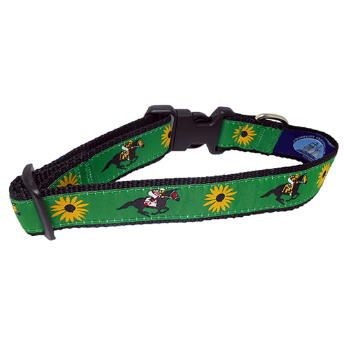 Off To The Races Dog Collar