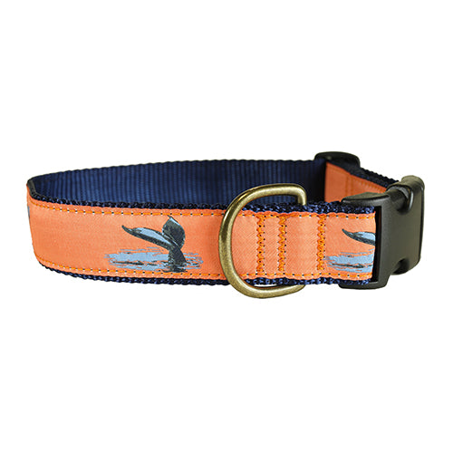 "Whale Tail 1.25"" Dog Collar"