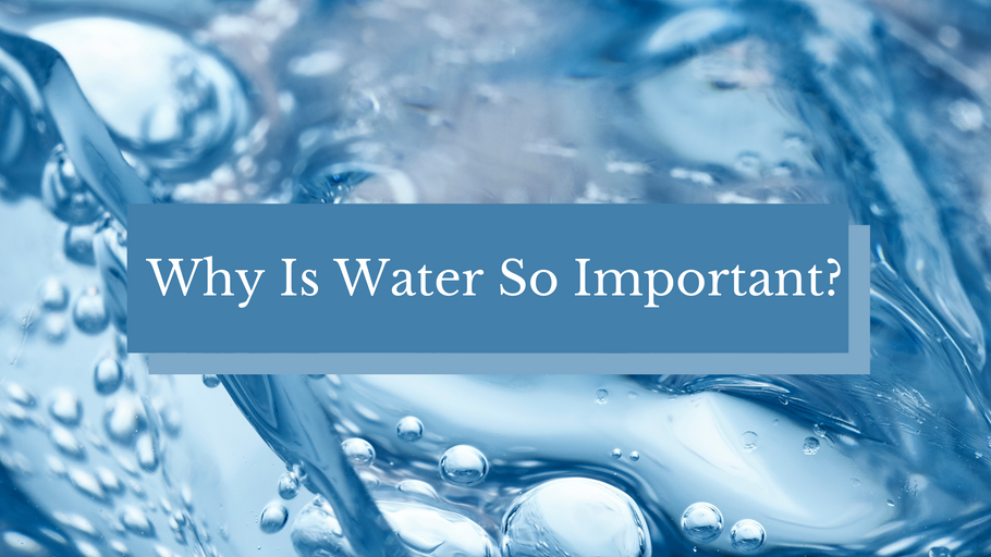 Why Is Water So Important?