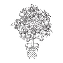 Coloring Book: Garden Set Collection