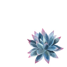 Watercoloring Book: Succulents