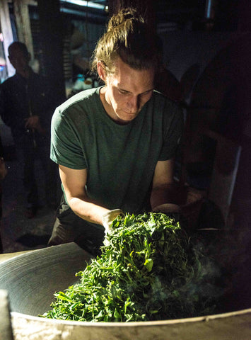 Daniel Mahoney of Wilderleaf Tea