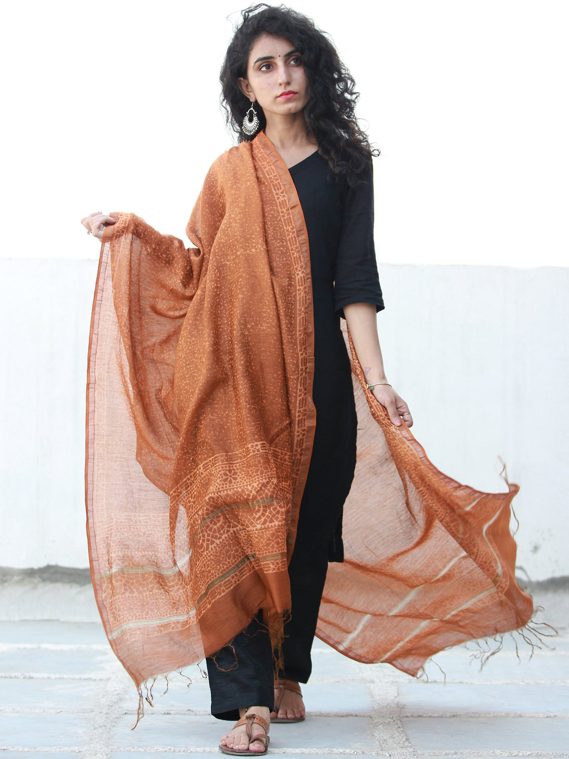 Light Brown Ivory Chanderi Hand Block Printed Dupatta - D04170484