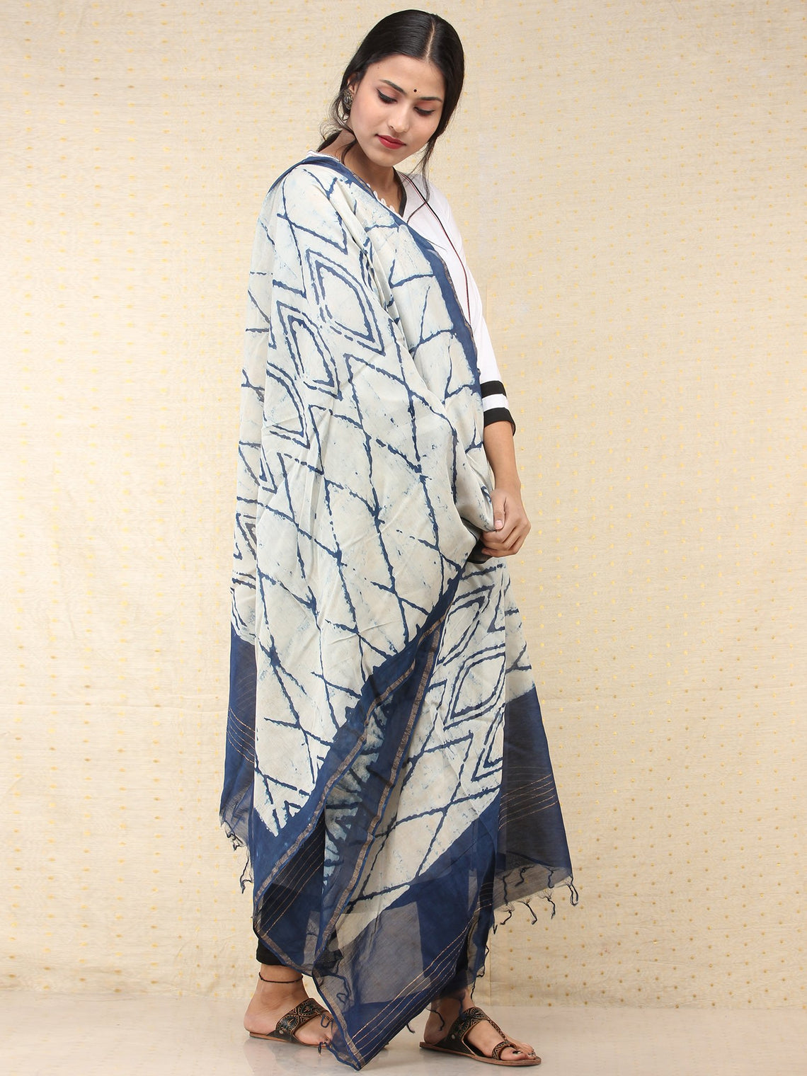 Indigo Chanderi Hand Brush Painted Dupatta - D04170736