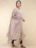 Kashish White Chanderi Hand Brush Painted Dupatta - D04170742