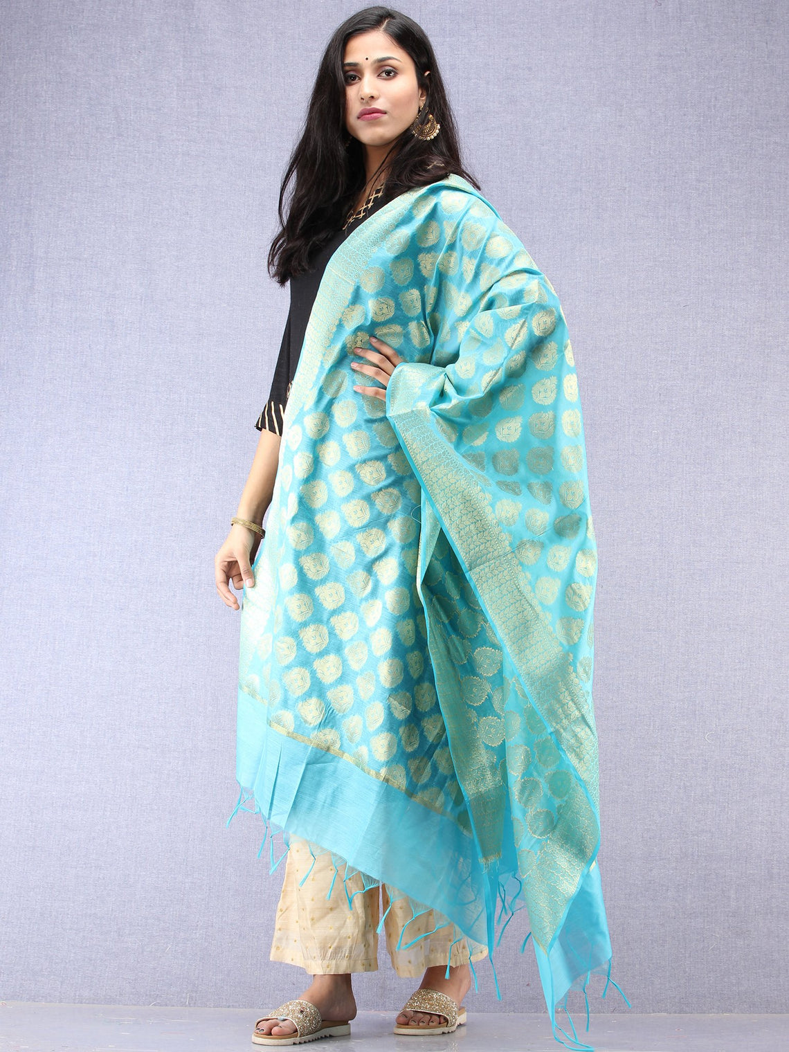 Banarasi Chanderi Dupatta With Zari Work - Sky Blue & Gold - D04170860