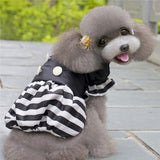 Winter Warm Jacket For Small Dogs