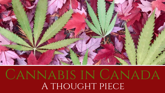 Cannabis in Canada - a thought piece by Canadian Artists from Pressed Wishes as they travel across Canada
