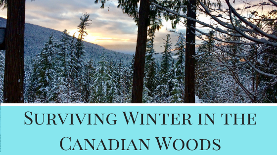 Surviving winter in the Canadian woods, a blog post about a day in the life
