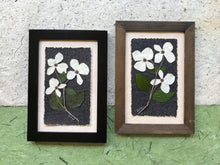 Real Pressed Dogwood Framed Picture by Pressed Wishes, Canadian Artists