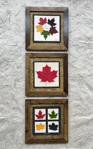 dried maple leaf framed artwork with walnut frame