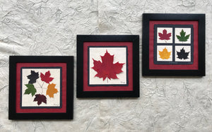 dried maple leaf framed artwork with black frame and red handmade paper