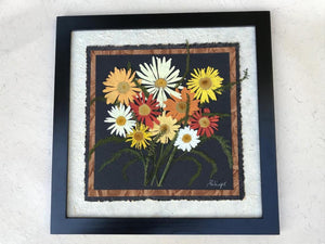 real pressed colourful shasta daisy framed artwork SIGNED ORIGINAL by Pressed Wishes