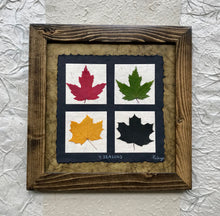 4 seasons pressed maple leaf framed art with green handmade paper and walnut frame