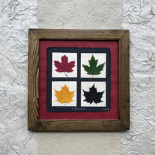 4 seasons pressed maple leaf framed art with red paper and walnut frame