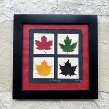 4 seasons pressed maple leaf framed artwork made with red handmade paper