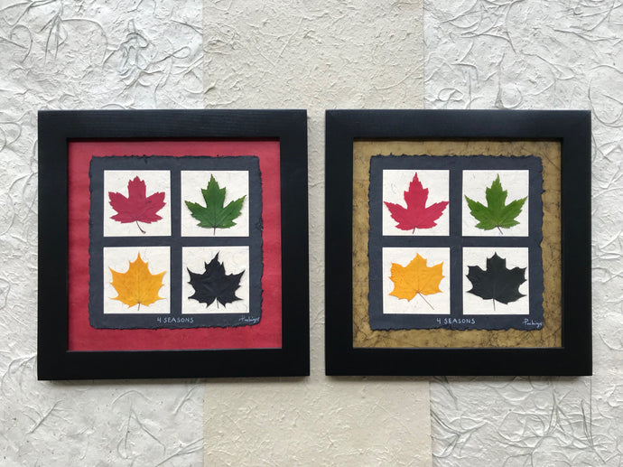 Dried Leaves. 4 seasons; pressed maple leaf artwork available with red or green handmade paper