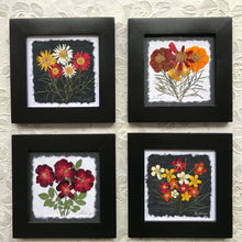 Dried flower artwork; orange and red pressed flower framed artwork 8x8