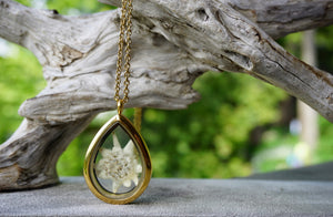 Real Pressed Edelweiss locket - gold plated stainless steel and glass locket by Pressed Wishes