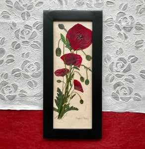 real pressed flanders field poppy framed artwork with black frame