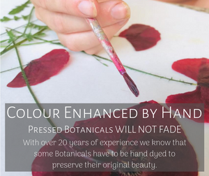 all pressed botanical are hand dyed to protect against fading PRESSED WISHES