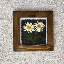 Pressed Shasta Daisy Framed Artwork in Walnut Frame