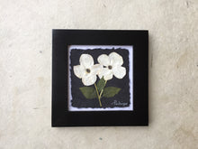 dogwood is the provincial flower of bc_Framed pressed flower art