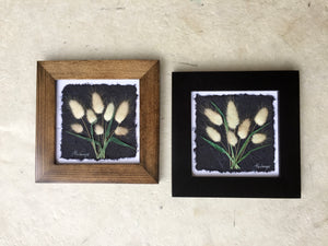 Dried botanical artwork; pressed bunnytail framed art_black and brown frame
