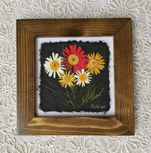 Dried Daisy; pressed botanical art; multicolor daisy framed artwork