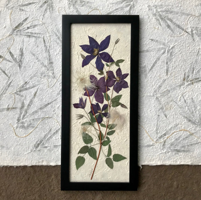 A pressed clematis stock and purple clematis flowers are arranged on white handmade paper and framed with a black handmade frame. The pressed botanical picture is 10x22 inches and is a handmade item by floral artist, Pressed Wishes
