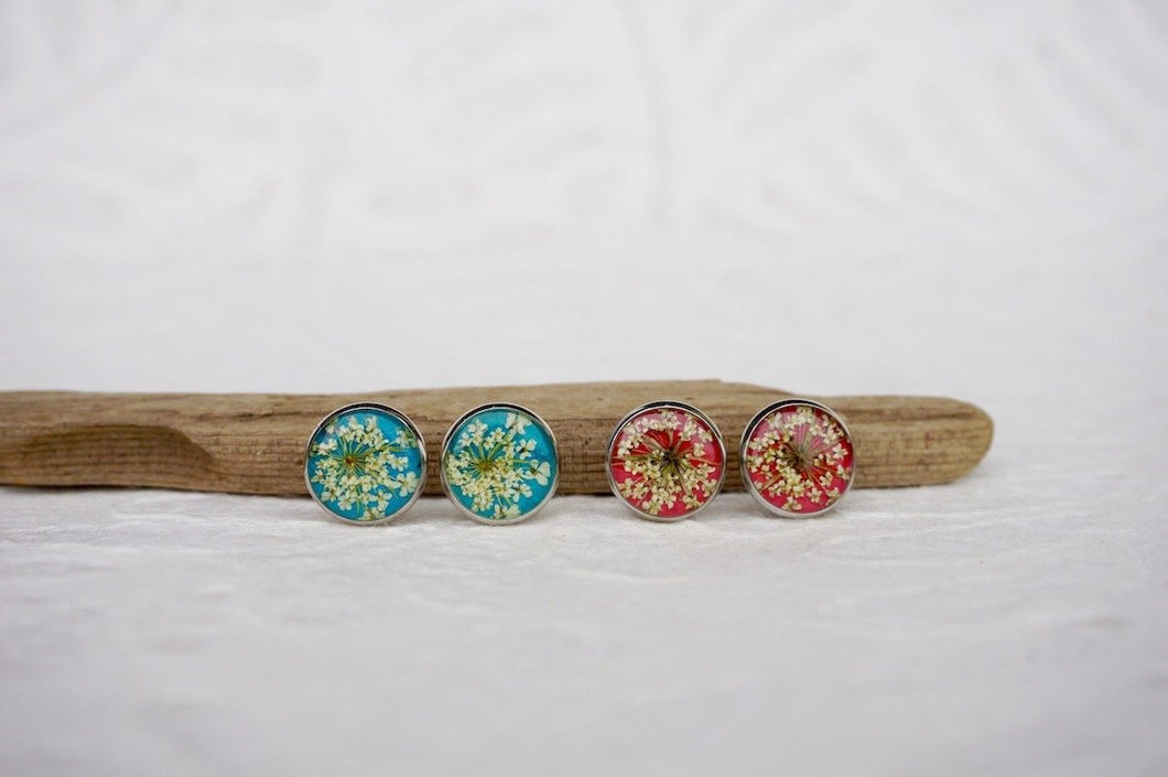 pressed queen annes lace stud earrings with blue and red background
