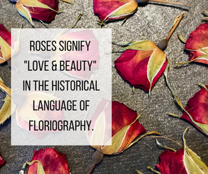 Roses symbolize love and beauty in the historical language of flirography.