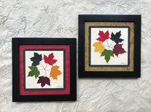 Dried Maple Leaves. The tattoo; pressed maple leaf framed artwork with handmade paper and black frame