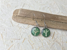 pressed lichen tree of life drop earrings with green handmade paper. sealed in eco resin