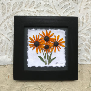 pressed black eyed susan framed picture