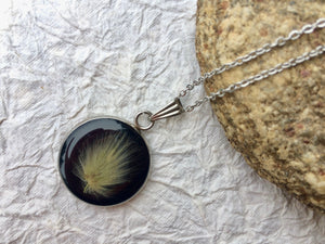 Dried Botanical pendant; pressed bunnytail necklace