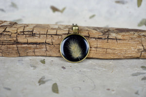 Preserved Bunnytail Botanical Antique Bronze Pendant Necklace by Pressed Wishes