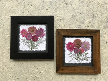 Dried Flowers; pressed chrysanthemum framed_artisan made
