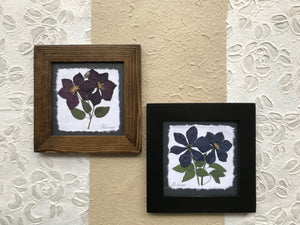 Dried Flowers; pressed clematis framed artwork handmade in canada
