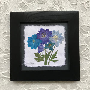 real pressed delphinium framed artwork with black frame 8x8