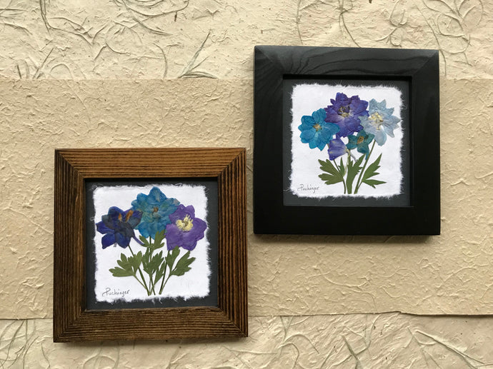 Dried Flowers; pressed delphinium framed artwork available in black and walnut frame