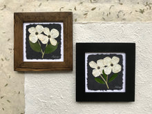 Dried Flowers; white pressed dogwood flower framed artwork; provincial flower of BC