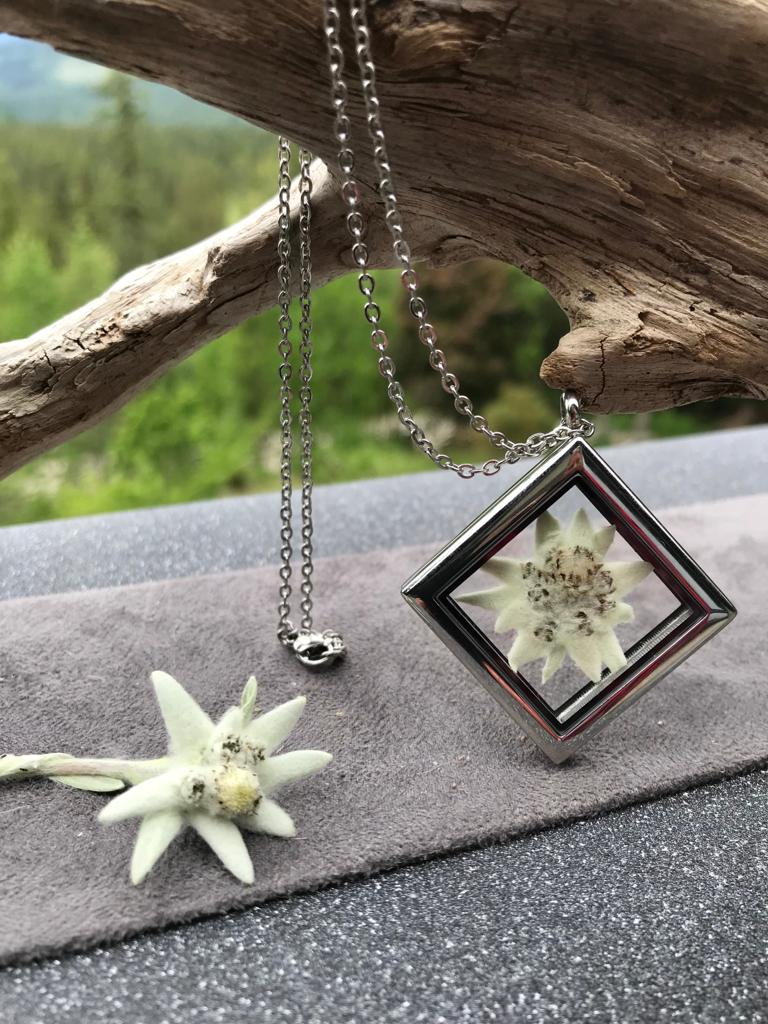 Real Pressed Edelweiss Locket - Stainless Steel Locket Collection by Pressed Wishes