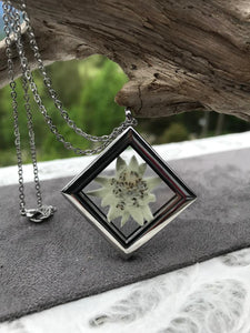 Real Pressed Edelweiss Necklace available for sale - Pressed Botanical Jewelry by Pressed Wishes