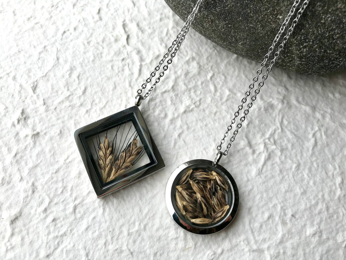 Dried Wheat; pressed ancient einkorn wheat stainless steel locket in diamond and circle